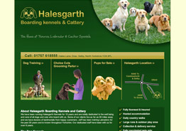 Halesgarth boarding kennels and Cattery near Selby